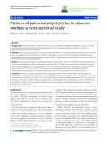 """báo cáo hóa học: """"  Patterns of pulmonary dysfunction in asbestos workers: a cross-sectional study"""""""