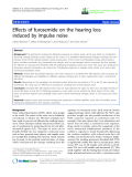 """báo cáo hóa học: """" Effects of furosemide on the hearing loss induced by impulse noise"""""""