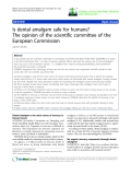 """báo cáo hóa học: """"  Is dental amalgam safe for humans? The opinion of the scientific committee of the European Commission Joachim Mutter"""""""
