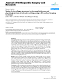 "báo cáo hóa học:""   Study of the collagen structure in the superficial zone and physiological state of articular cartilage using a 3D confocal imaging technique"""