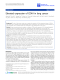 """báo cáo hóa học:""""  Elevated expression of CDK4 in lung cancer"""""""