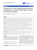 """báo cáo hóa học:""""  Comparisons of three polyethyleneimine-derived nanoparticles as a gene therapy delivery system for renal cell carcinoma"""""""
