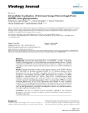 "báo cáo hóa học:""  Intracellular localization of Crimean-Congo Hemorrhagic Fever (CCHF) virus glycoproteins"""