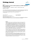 """báo cáo hóa học:""""Effect of ethanol on innate antiviral pathways and HCV replication in human liver cells"""""""