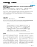 """báo cáo hóa học:""""Localization of deformed wing virus infection in queen and drone Apis mellifera L"""""""