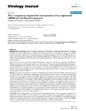 """báo cáo hóa học:"""" The 3' sequences required for incorporation of an engineered ssRNA into the Reovirus genome"""""""