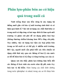 Phân lợn-phân bón ao có hiệu quả trong nuôi cá