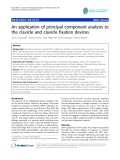 "báo cáo hóa học:""  An application of principal component analysis to the clavicle and clavicle fixation devices"""