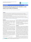 "báo cáo hóa học:""   Small cell osteosarcoma of a toe phalanx: a case report and review of literature"""