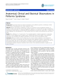 """báo cáo hóa học:""""   Anatomical, Clinical and Electrical Observations in Piriformis Syndrome"""""""