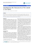 "báo cáo hóa học:""   Osteoblastoma-like Osteosarcoma of the Cuboid: A Case Report"""