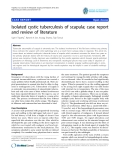 "báo cáo hóa học:""  Isolated cystic tuberculosis of scapula; case report and review of literature"""