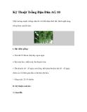 Kỹ Thuật Trồng Đậu Đũa AG 10