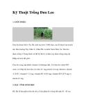 Kinh nghiệm Trồng cây  Dưa Leo