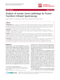 "báo cáo hóa học:""   Analysis of ovarian tumor pathology by Fourier Transform Infrared Spectroscopy"""