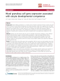 """báo cáo hóa học:""""   Mural granulosa cell gene expression associated with oocyte developmental competence"""""""