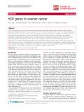"báo cáo hóa học:""   HOX genes in ovarian cancer"""