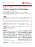 "báo cáo hóa học:""   Nuclear survivin expression is a positive prognostic factor in taxane-platinum-treated ovarian cancer patients"""