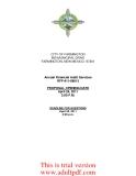 Annual Financial Audit Services _part1
