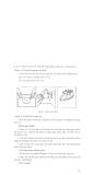 Hướng dẫn dạy nghề kỹ thuật mộc tay part 10