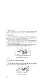 Hướng dẫn dạy nghề kỹ thuật mộc tay part 5