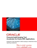 Financial Audit Scoping Tool Accelerator for Oracle GRC Applications_part1