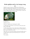 Kinh nghiệm nuôi cá tai tượng trong ao