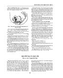 Bách khoa thư bệnh học tập 2 part 8