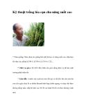 Kỹ thuật trồng lúa cạn cho năng suất cao