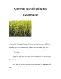Qui trình sản xuất giống lúa JASMINE 85