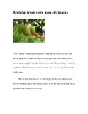 Bệnh hại trong vườn ươm cây ăn quả