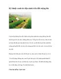 Kỹ thuật canh tác đậu nành trên đất ruộng lúa dành cho nhà nông