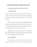 Kỹ thuật trồng bông vải năng suất cao (P3)