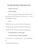 Kỹ thuật trồng bông vải năng suất cao (P4)