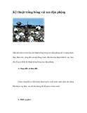 Kỹ thuật trồng bông vải xen đậu phộng