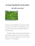 Kinh nghiệm trồng đậu Hà Lan theo hướng sản xuất rau an toàn