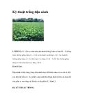 Kinh nghiệm trồng đậu nành