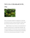 Xử lý ra hoa ,biện pháp giữ trái sầu riêng