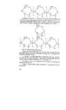 Giáo trình học vi sinh vật học công nghiệp part 5