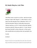Kỹ thuật trồng hoa Anh Thảo