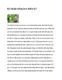 Kỹ thuật trồng hoa thiên lý?