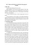 Bài 7: Chiết rút sắc tố từ lá và xác định tính cảm quang của clorophin