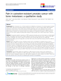 "báo cáo hóa học:"" Pain in castration-resistant prostate cancer with bone metastases: a qualitative study"""