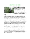 Dưa Hấu… Leo Giàn