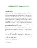 Kỹ Thuật Trồng Thanh Long (P2)
