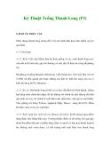 Kỹ Thuật Trồng Thanh Long (P3)