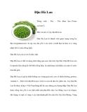 Trồng cây đậu Hà Lan