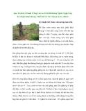Quy Trình Kỹ Thuật Trồng Cao Su Trên Đất Rừng Nghèo Ngập Úng