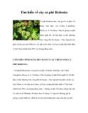 Tìm hiểu cây cà phê Robusta