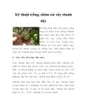 Kỹ thuật trồng, chăm sóc cây chanh dây